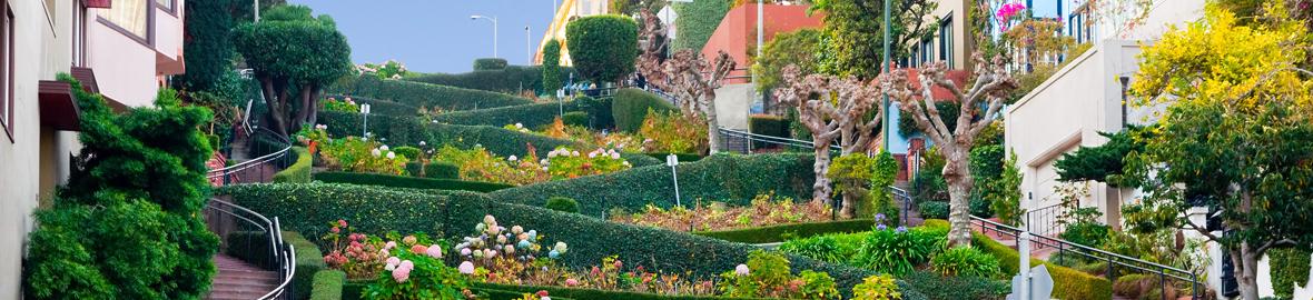 Personal Disability Insurance   Employee Benefits   San Rafael   Marin