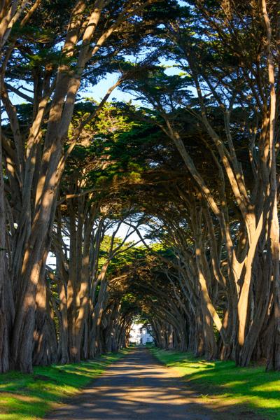 Personal Life Insurance | Employee Benefits | San Rafael | Marin